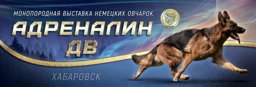 Наградной ринг «Адреналин ДВ» 2019