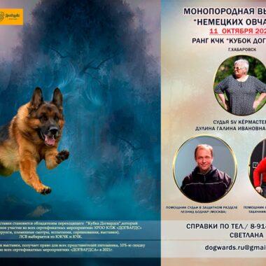 Кубок ДОГВАРДСА 11.10.2020